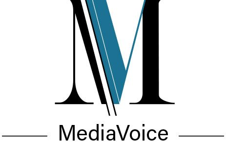 logo mediaVoice Consulting